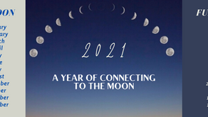 A Year of connecting to the Moon - 2021 Summary