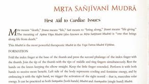 Apana Vayu Mudra - The First Aid hand position