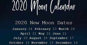 New Moon Wishes - 2020 Summary