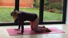 Introduction to Yoga - 4 week course