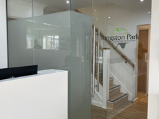 Frameless glass door and partitions