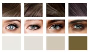 colourpalettes.png