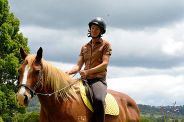 Bitless brumby being ridden by Suzy from Happy Horses Bitless