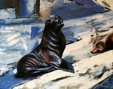 Tassie Seals