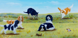 Lia's Dogs