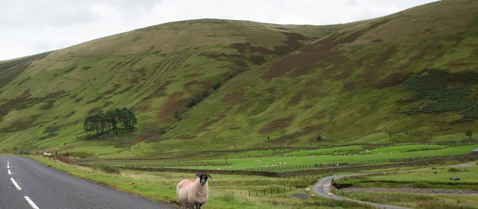 Road Trip to Scotland Day 2 – Edinburgh bound