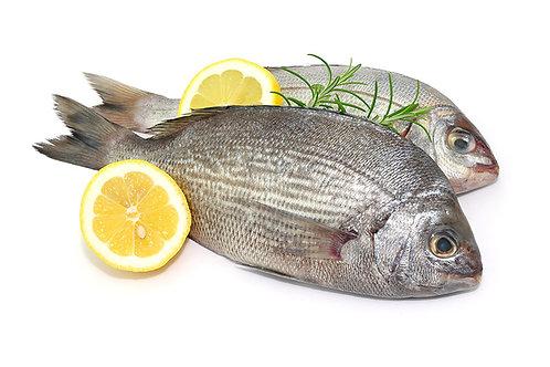 Goldbrasse Fisch (1Kg)