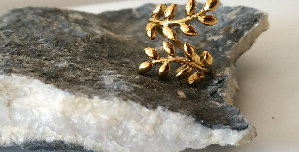 Δαχτυλίδι από ανοξείδωτο ατσάλι σε σχήμα ελιάς