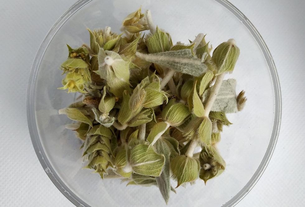 Τσάι του Βουνού Άνθος