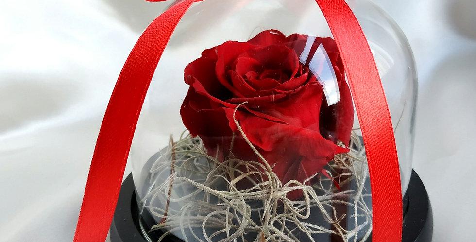 Κόκκινο forever rose σε γυάλινη καμπάνα με καρδιά