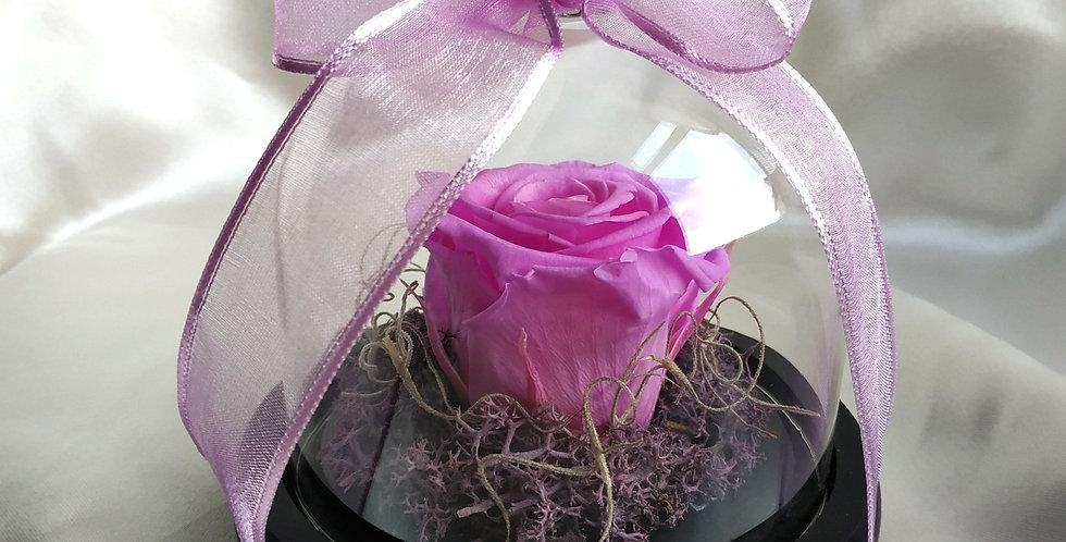 Forever rose ροζ σε γυάλινη καμπάνα με καρδιά