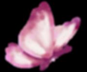 logo_hilal.png
