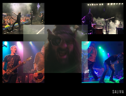 Saliva collage.png