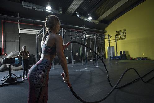 4 Week Gym & Meal Plan