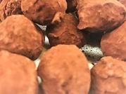 Truffe cacao.jpg