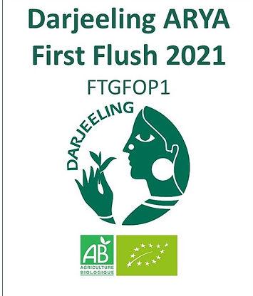 FIRST FLUSH 2021.jpgsite.jpg