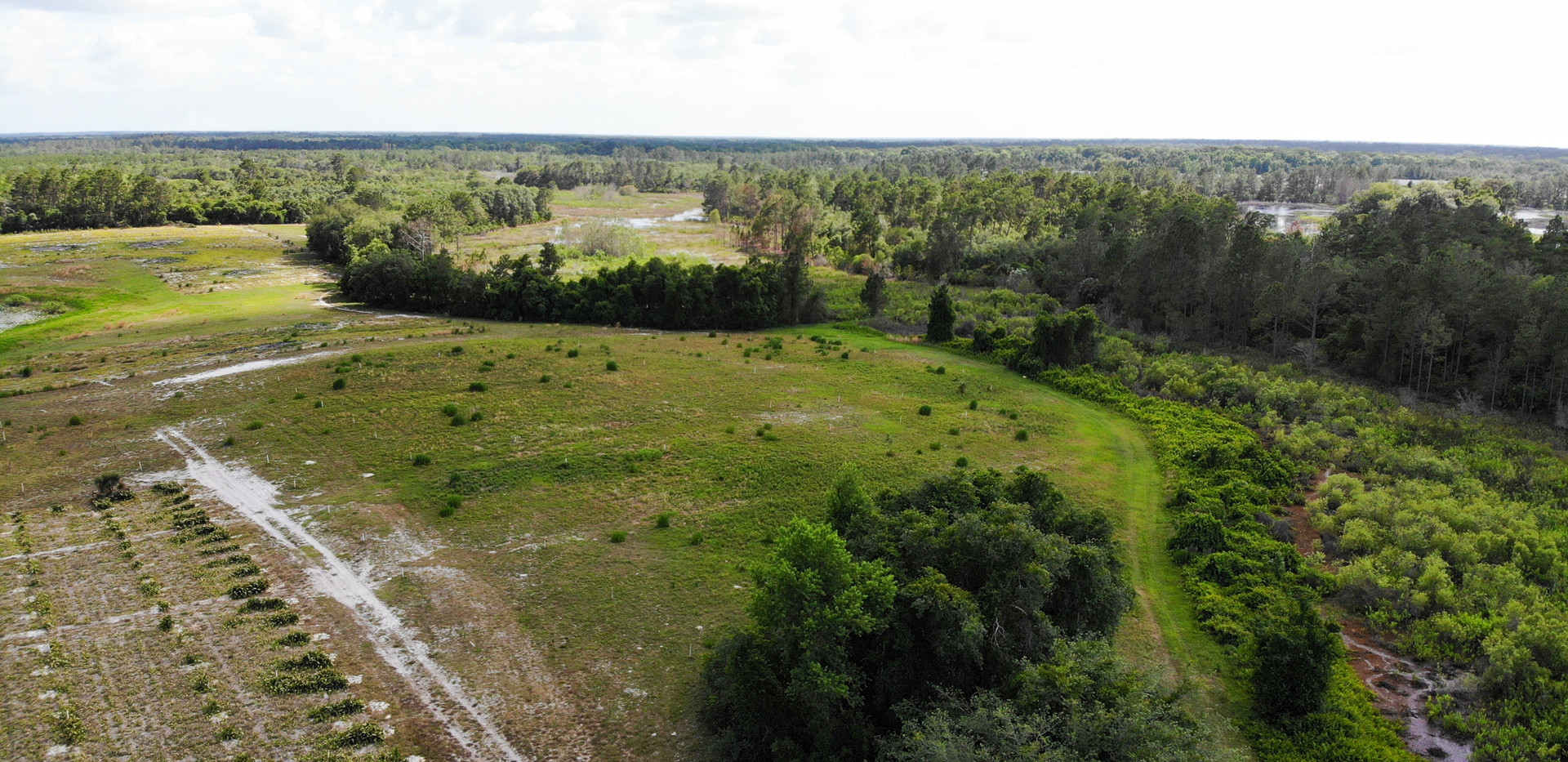 80acres-eustis-fl-4.jpg