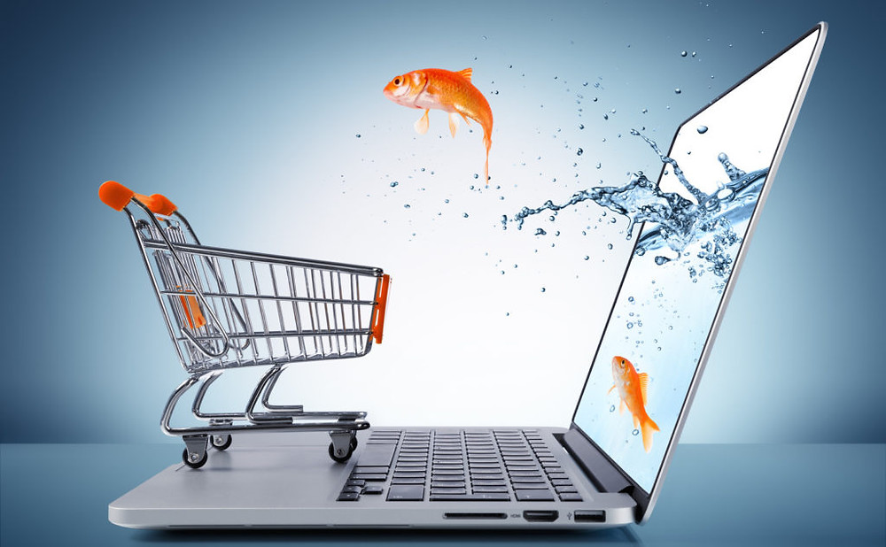 Impulsa tu negocio web con E Commercee 2 1