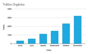 SKF_Tráfico_Orgánico.png
