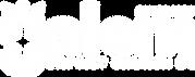 Salem_white-logo.png