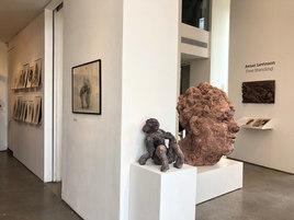 Zemack gallery- show view