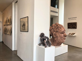 Zemack gallery- show view