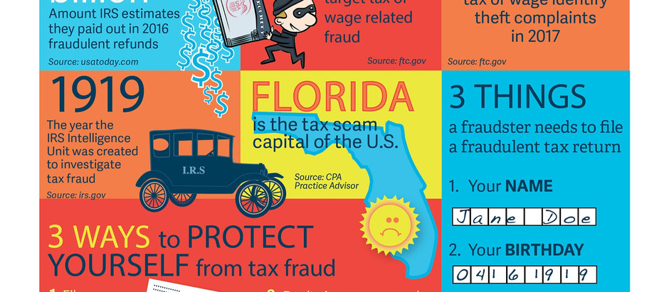 Tax Fraud Facts