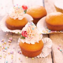 granillo cupcake-2504