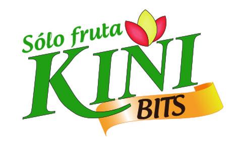 Logo Kini Bits