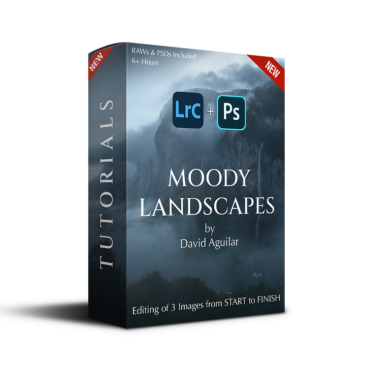 Moody Landscapes (final).png