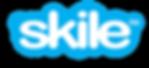 skile skype logo