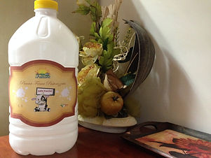 panna fresca pastorizzata di latte vaccino