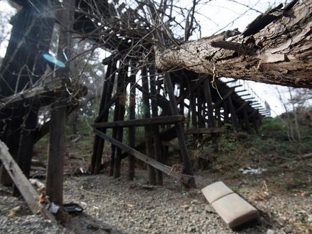 Battle To Save Willow Glen Trestle Returns To Courtroom