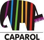 краска капарол, краска caparol