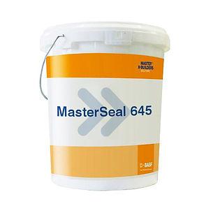 masterseal 645.jpg