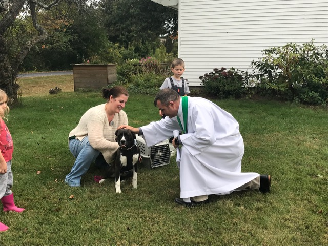 Blessing of the Animals 2019 3