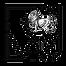 Logo - Casa de avocatura - Filipoiu Law