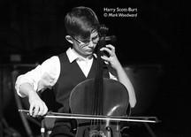 Harry SB