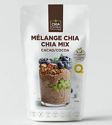 pouding chia cacao cocoa chia pouding ch