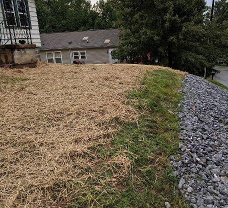 Yard / stone install