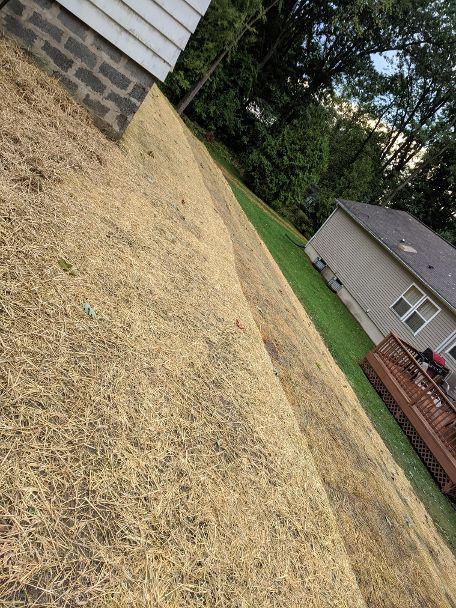 Yard install / grading