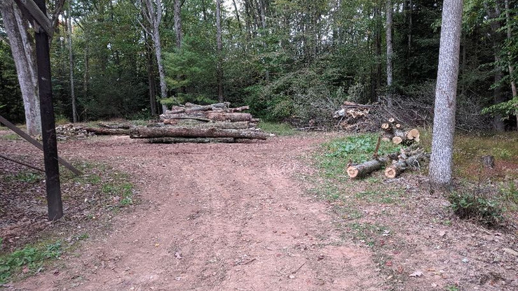 Storm / Land clean up