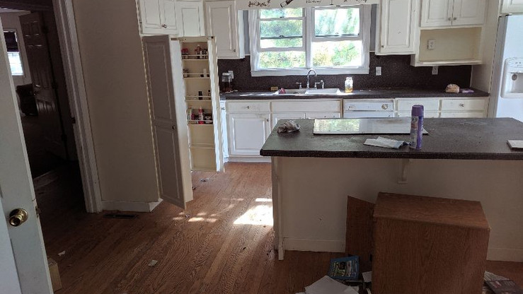 Property Clean out / reclamation