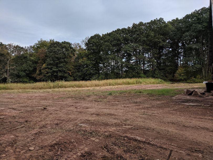 Land cleanup / grading