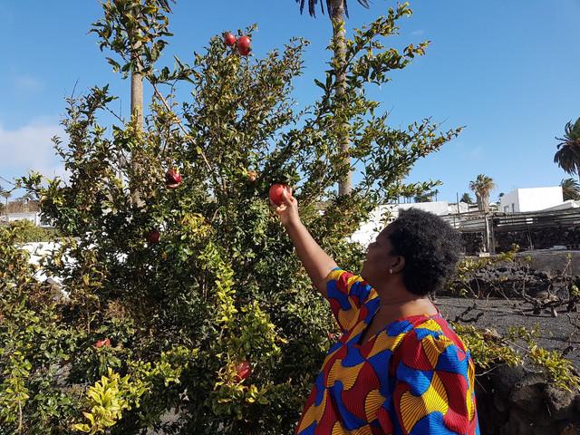 Lanzarote, October 2016