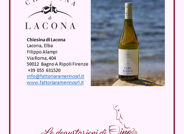 Elba Bianco DOC 2019 - Chiesina Lacona