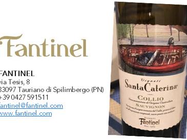 Santa Caterina Collio DOC Sauvignon 2003 Fantinel  - Invecchiare con classe e grande eleganza