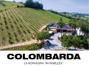 """La Tenuta Colombarda - Dove la storia è il territorio """"in purezza"""""""