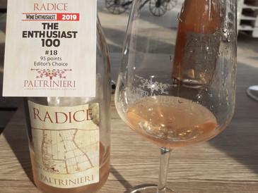 Il RADICE 2018 della Cantina Paltrinieri al 18° posto nella classifica dei 100 Top Wines 2019 per Wi