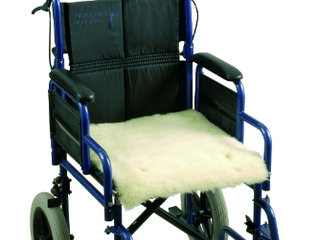 What Wheelchair Accessible Vehicles are available?
